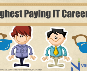 Highest Paying IT Careers Infographic